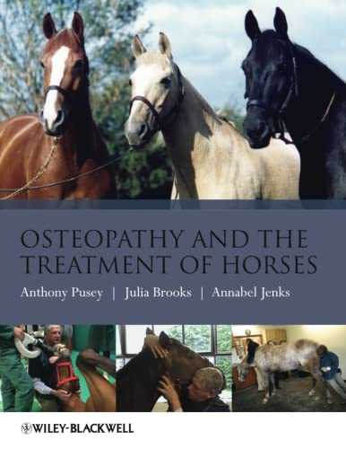 Osteopathy Treatment Horses - Pusey