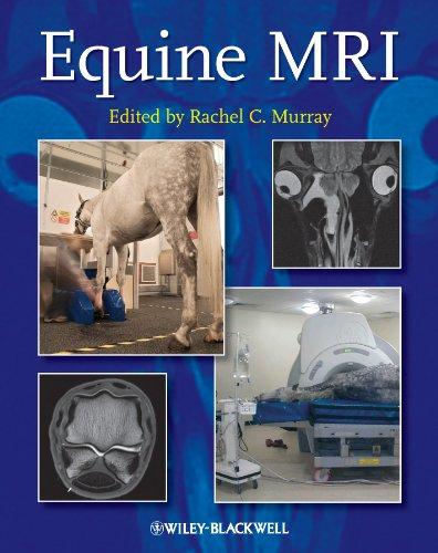 9781405183048: Equine MRI