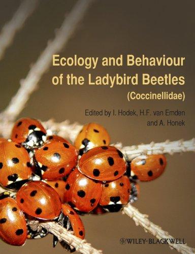 9781405184229: Ecology & Behaviour of the Ladybird