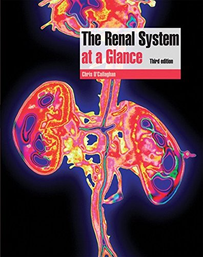 9781405184724: The Renal System at a Glance