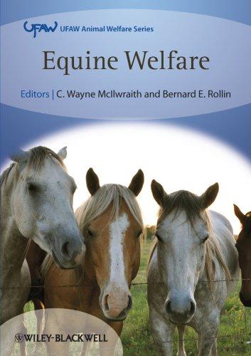 9781405187633: Equine Welfare