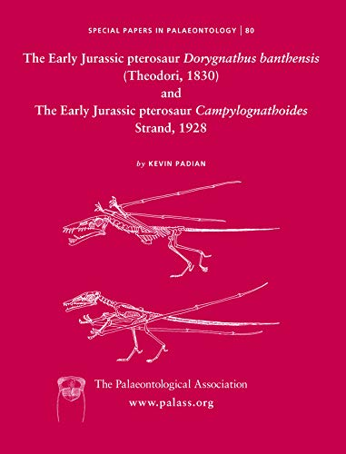 9781405192248: The Early Jurassic Pterosaur Dorygnathus Banthensis (Theodori, 1830) and the Early Jurassic Pterosaur Campylognathoides Strand, 1928 (Special Papers in Palaeontology)