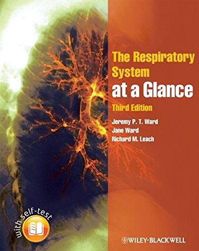 9781405199193: The Respiratory System at a Glance