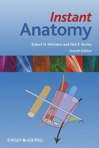 9781405199612: Instant Anatomy