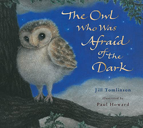 9781405201773: The Owl Who Was Afraid of the Dark