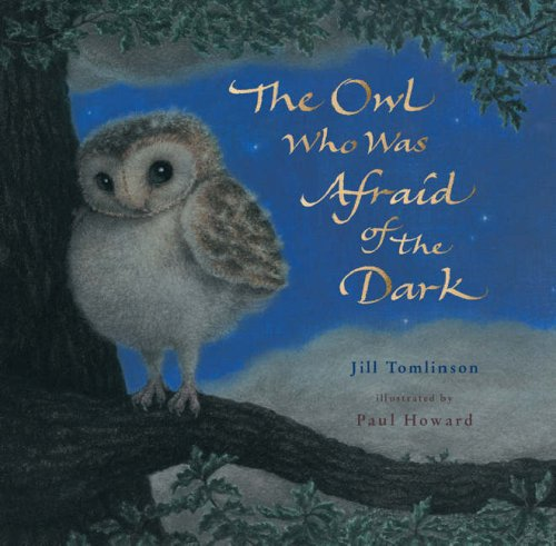 The Owl Who Was Afraid of the Dark: Tomlinson, Jill