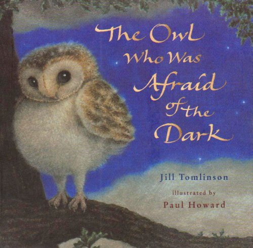 9781405222266: The Owl Who Was Afraid of the Dark
