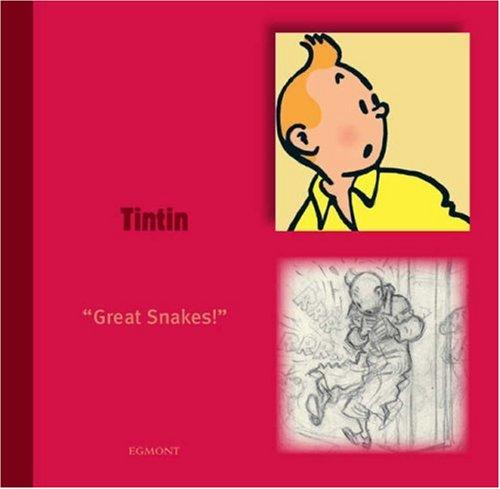 9781405230582: Tintin (Tintin Character)