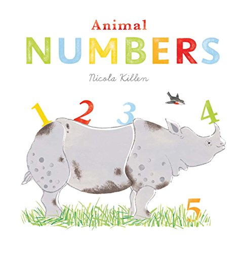 9781405262774: Animal Numbers (Nicola Killen Animals)