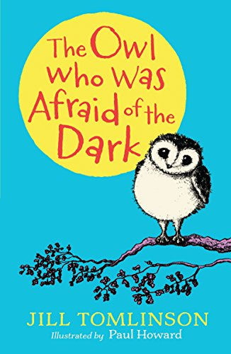 9781405281843: The Owl Who Was Afraid of the Dark