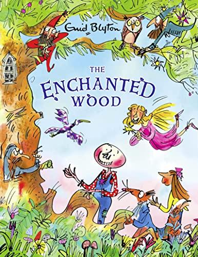 9781405283014: The Enchanted Wood (Magic Faraway Tree)