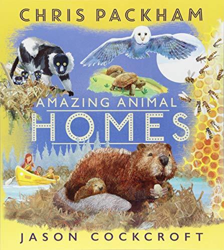 9781405284899: Amazing Animal Homes