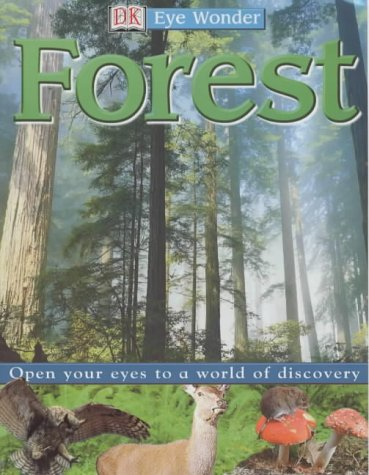 9781405300919: Forest (Stickers, Playboard)