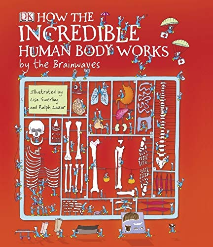 9781405321747: How the Incredible Human Body Works: by the Brainwaves