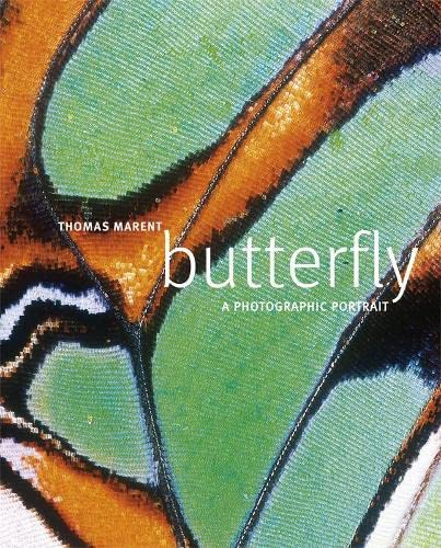 9781405325400: Butterfly: A photographic portrait (Dk Reference)