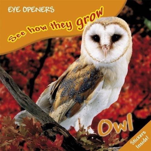 9781405328463: Owl (Eye Openers See How They Grow)