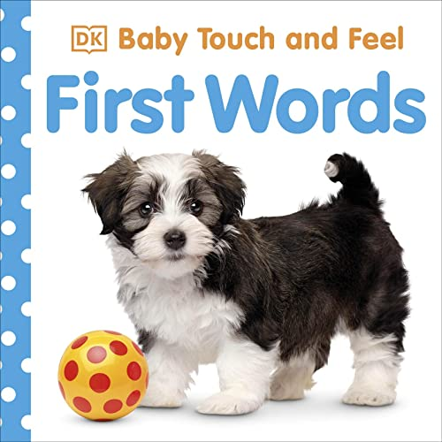 9781405329149: First Words (Baby Touch and Feel)