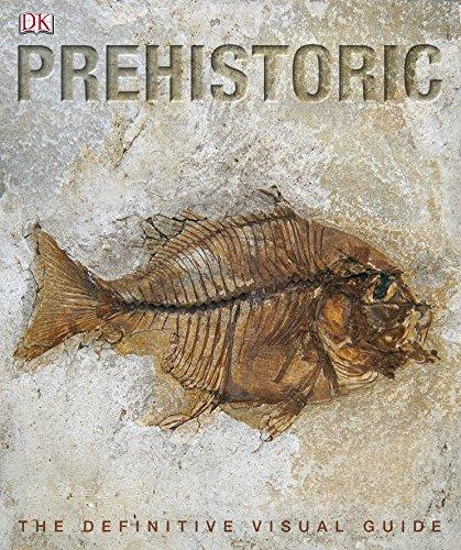9781405337045: Prehistoric (Dk)