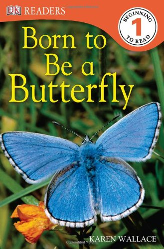 9781405353441: Born to be a Butterfly