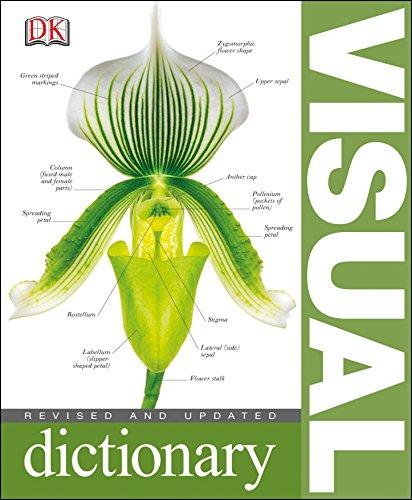 9781405363907: Visual Dictionary
