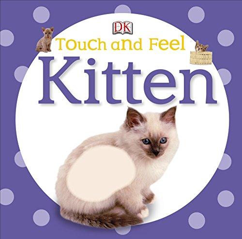 9781405394277: Kitten. (DK Touch & Feel)