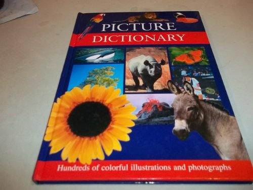 9781405405195: Picture Dictionary: Hundreds of Colorful illustrations and photographs