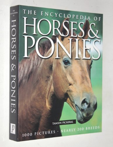9781405416252: Horses (Encyclopedia)