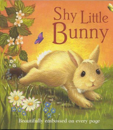 9781405427487: Shy Little Bunny