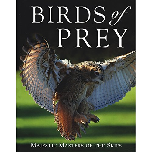 9781405463737: Birds of Prey: Majestic Masters of the Skies