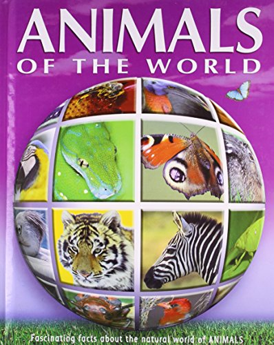 9781405466769: Animals (Q & A Reference)