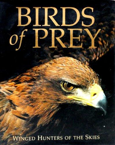 9781405471312: Birds of Prey
