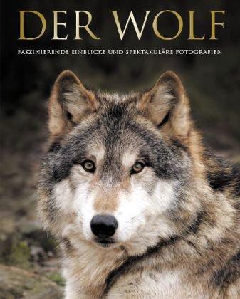 9781405479257: Der Wolf: Fasziniernde Einblicke und spektakuläre Fotografien