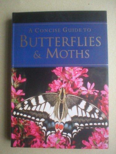 9781405488037: A Pocket Guide to Butterflies & Moths