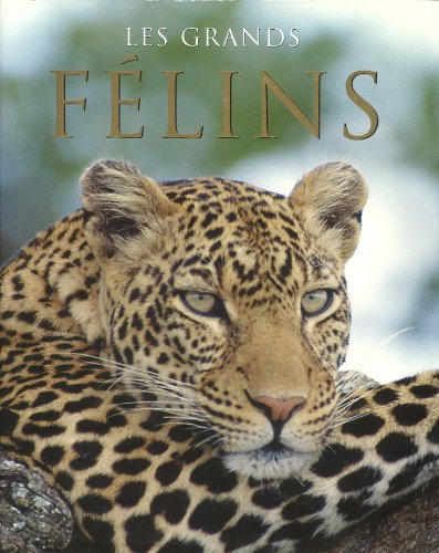 9781405489218: Les Grands Felins (Spirit of) (French Edition)