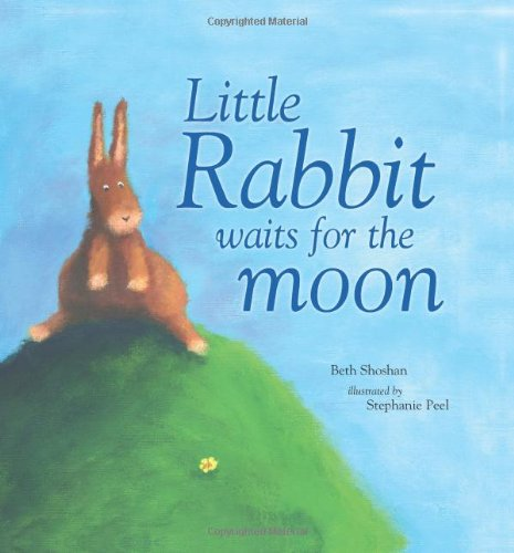 9781405495370: Little Rabbit Waits for the Moon