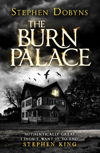 9781405915274: The Burn Palace