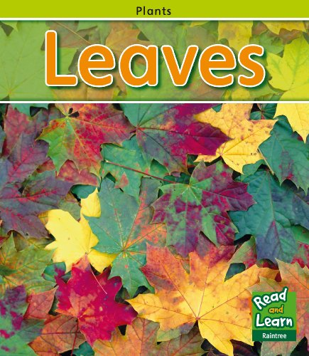 9781406211450: Leaves (Read and Learn: Plants)