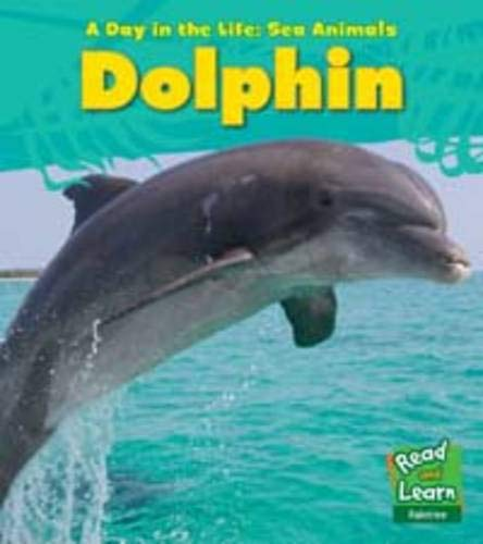 9781406217018: Dolphin (Young Explorer: A Day in the Life: Sea Animals)