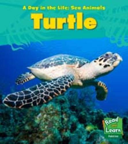 9781406217056: Sea Turtle (Young Explorer: A Day in the Life: Sea Animals)