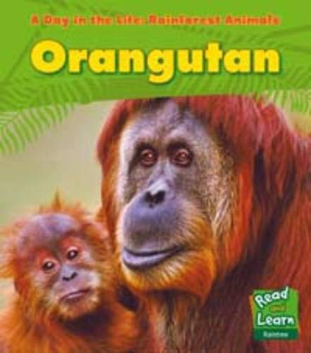 9781406217858: Orangutan (Day in the Life. Rainforest Animals)