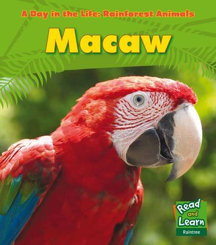 9781406218787: Macaw (Young Explorer: A Day in the Life: Rainforest Animals)