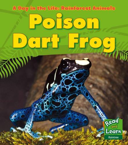 9781406218817: Poison Dart Frog (Young Explorer: A Day in the Life: Rainforest Animals)