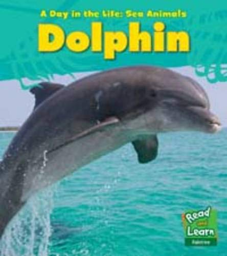 9781406218855: Dolphin (Day in the Life. Sea Animals)