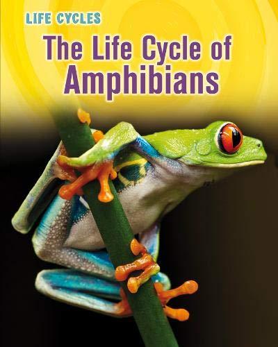 9781406223668: Life Cycle of Amphibians (Life Cycles)