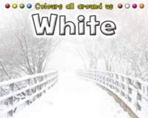 9781406226027: White (Colours All Around Us)