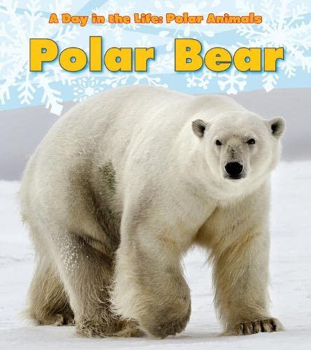 9781406228816: Polar Bear (Day in the Life. Polar Animals)