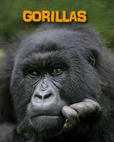 9781406233100: Gorillas (Infosearch: Living in the Wild: Primates)