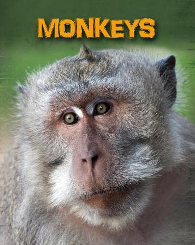 9781406233124: Monkeys (Infosearch: Living in the Wild: Primates)