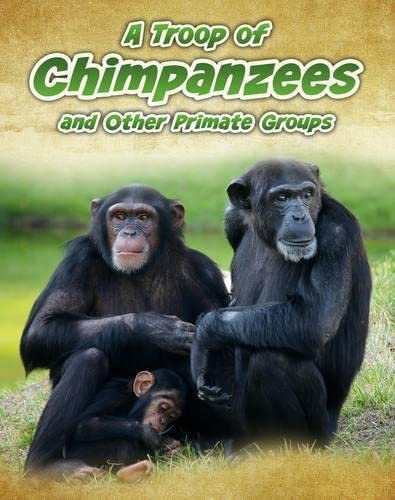 A Troop of Chimpanzees: And Other Primate Groups (Infosearch: Animals in Groups): Spilsbury, ...