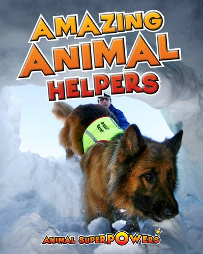 9781406241174: Amazing Animal Helpers (Read Me!: Animal Superpowers)